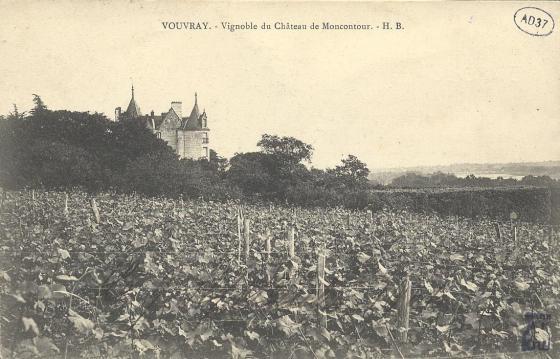 Vignobles du château de Moncontour