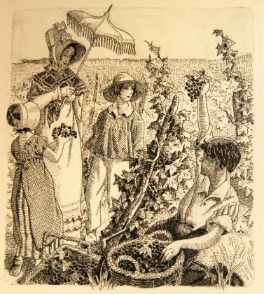 [Félix, Henriette et ses enfants au milieu des vignes]