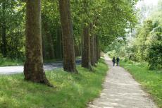 La route de Pont-de-Ruan