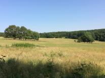 La vallée de l'Indre